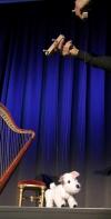 Marionette Zeryk groß